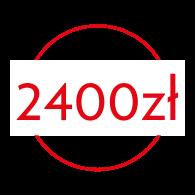 2400 ZŁ Szkolenie Fryzjerskie Skuteczna Dekoloryzacja